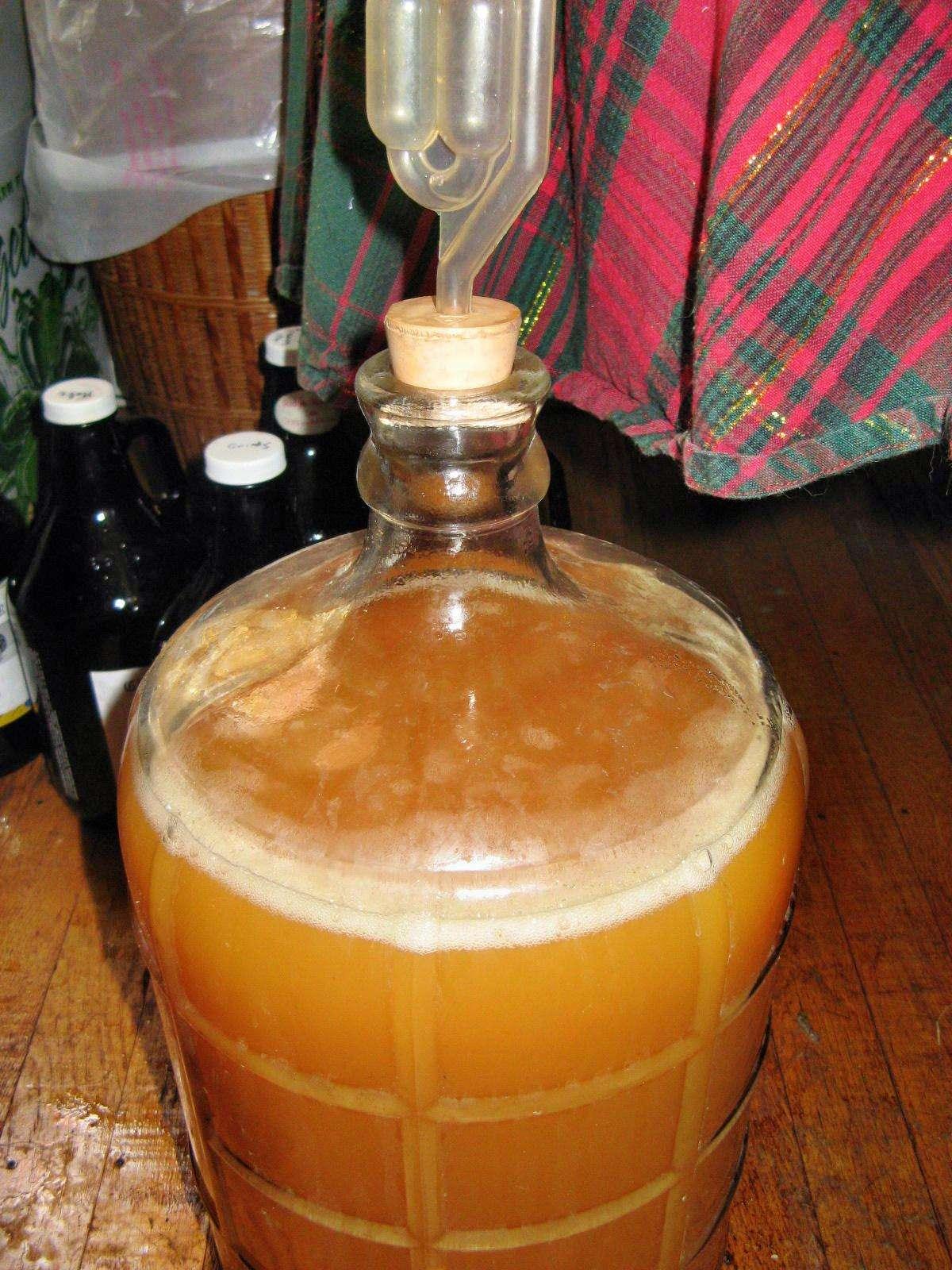 Как сделать вино из яблок в