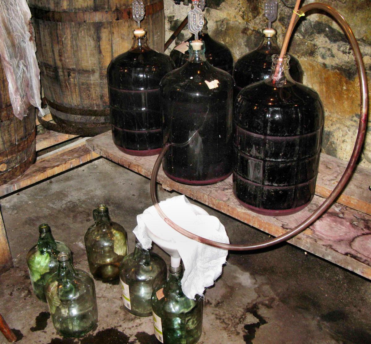 Как сделать домашнее вино из роз